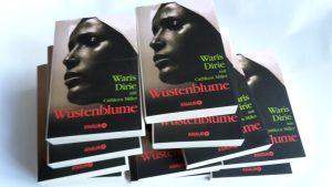 Das Buch Wüstemblume kann kostenlos für die Arbeit im Unterricht bestellt werden